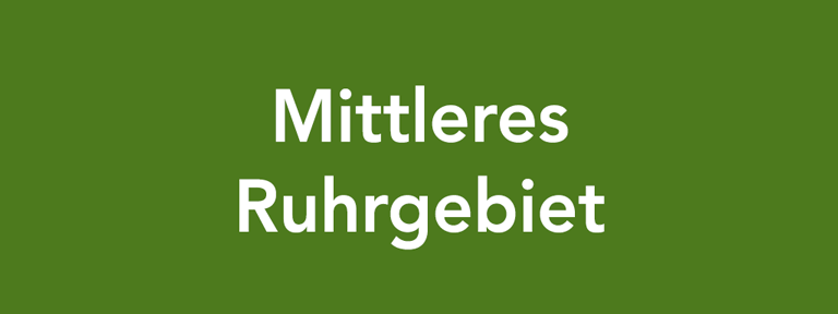 Berufswahl-SIEGEL-NRW-Mittleres-Ruhrgebiet-768x288