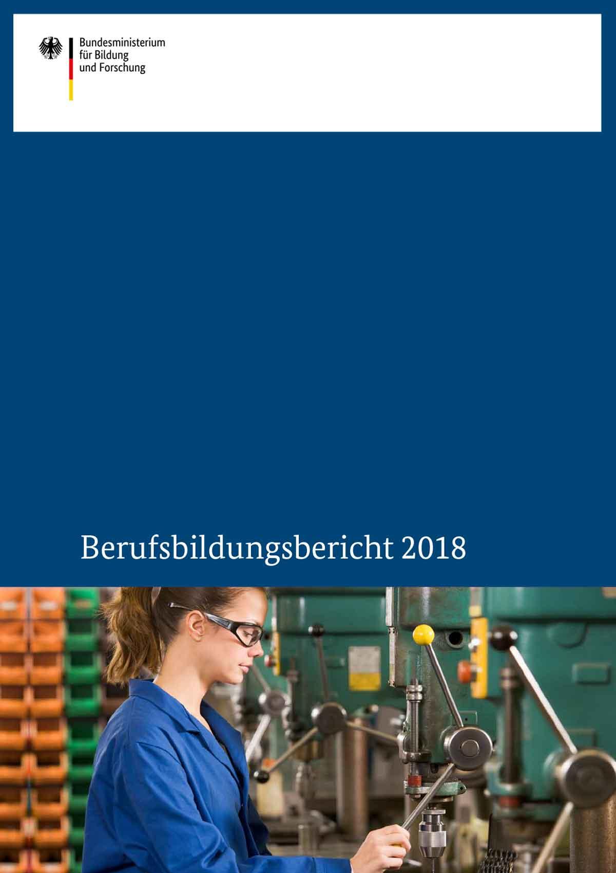 netzwerk-berufswahlsiegel-Blog-berufsausbildungsbericht-2019-Titel